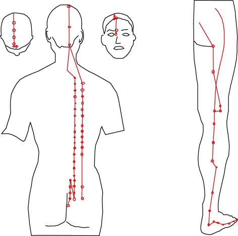 La douleur et le droit au côté du dos